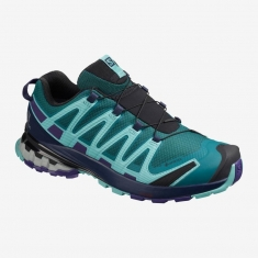 Salomon XA PRO 3D v8 GTX W Shaded Spr - 409903 - 2020